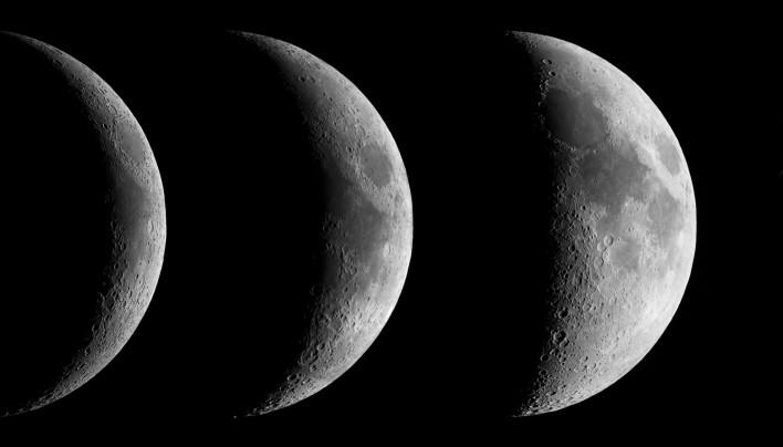 Jardiner avec la lune olivier magn tiseur dax - Jardiner avec la lune ...