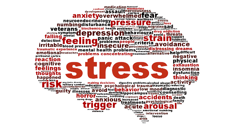10 Lois Anti-Stress :