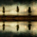 """L' effet """"miroir"""""""